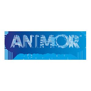 client-Animor